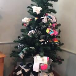 Sock Tree.jpg