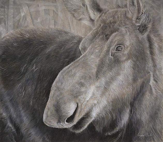 'Alces Alces' Original pastel moose artwork