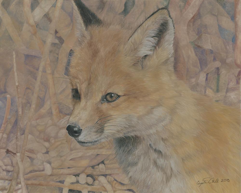 Realistic fox kit pastel piece