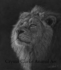 African art, lion artwork, limited edition prints