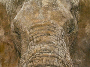 Kenneth the Elephant - The Story behind the Artwork