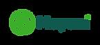 mayani_logo.png