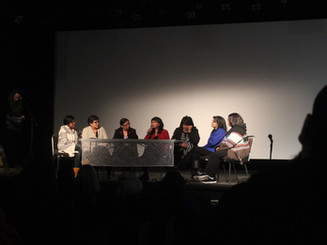 For Love of a River - Post-film Panel