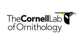 Lab of Ornith logo rough_edited_edited.j