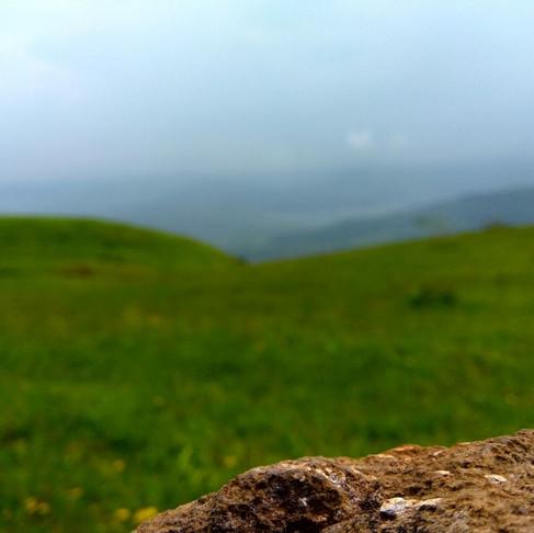 Kaas Plateau: Nature's own Wedding Decor!