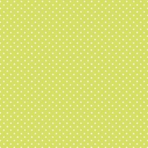 M173 Spot - Kiwi