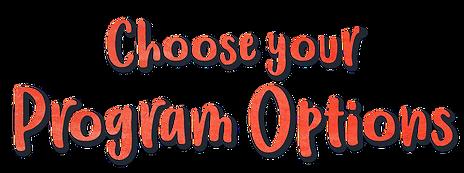 choose your program options.png