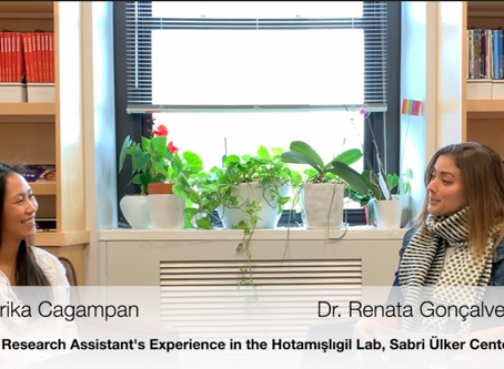 Research Assistant's Experience in the Hotamışlıgil Lab