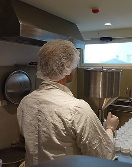 Spruce resin salve (ointment) production