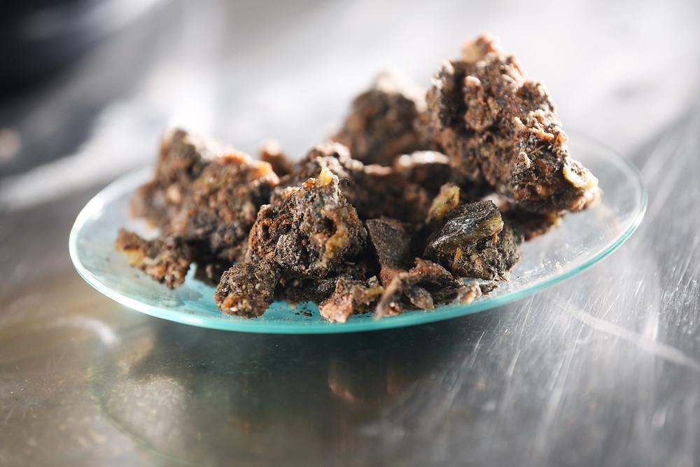 V smrekovi smoli je več kot 80 različnih organskih snovi, ki delujejo na naš organizem.