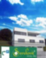 Smrekovo mazilo od leta 2010 izdelujemo v Ljubljani