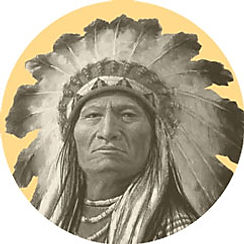 Native Americans used traditional spruce resin ointment