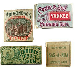 First chewing gum was made from spruce resin