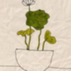 ゆみちゃん 植物.jpeg