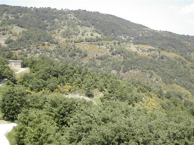 panoramiche da ripetitore 005