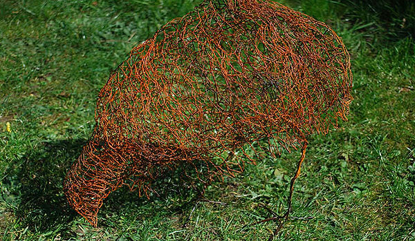 Weka Bird. Painted mixed wires, garden sculpture