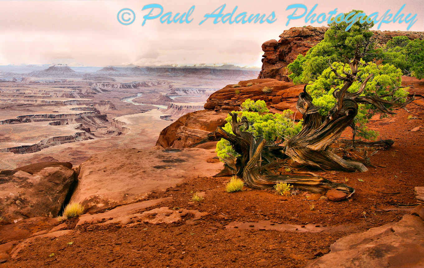 White Rim Canyon