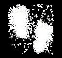Fürßchen_transparent_Zeichenfläche 1.png