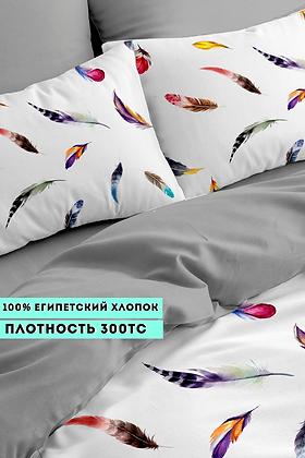 Комплект постельного белья Разноцветные перья