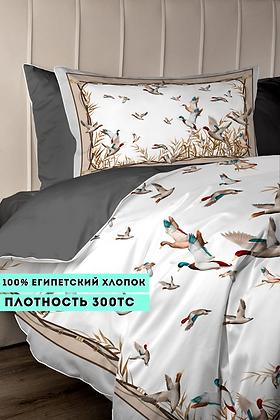 Комплект постельного белья Полёт