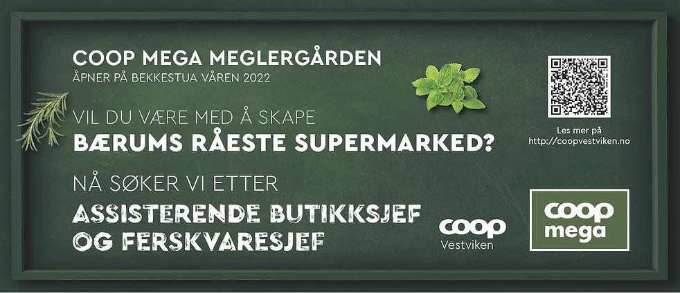 meglergården_ass.PNG