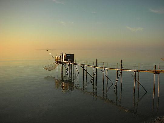 Pêche au carlet à l'ile d'Oléron