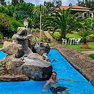 Pool Madeira Villa