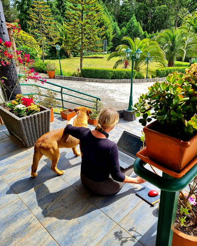 Vicky with love for our garden dog lotus ...