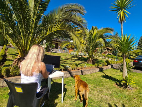 Arguments how to convince your boss about remote working