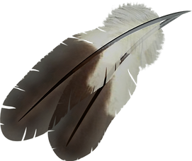 two feathers.png