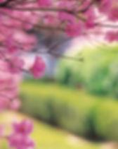 Haar en huid in mei, De holistischeharenkalender
