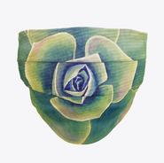 Green Succulent Face Mask