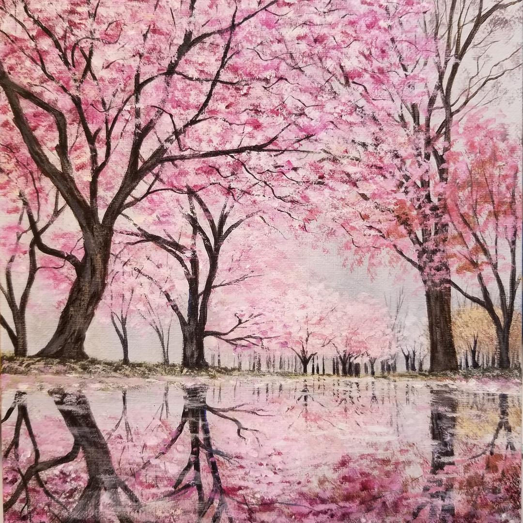 Cherry Tree Reflections
