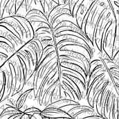 Monstera Tropical Palm Leaves Traceable
