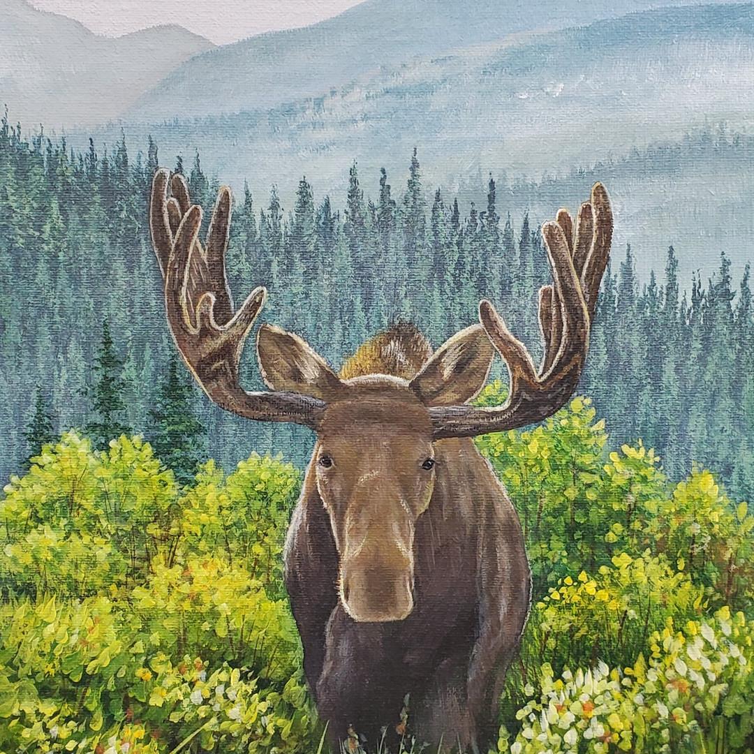 Moose Landscape
