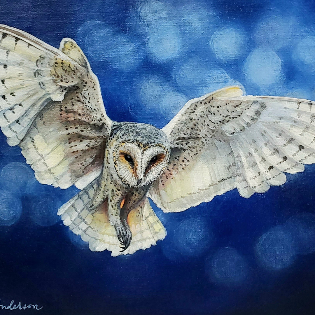 Flying White Owl