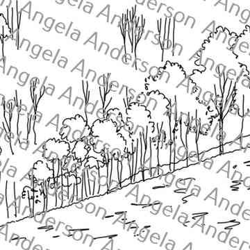 Easy Yellow Tree Landscape Traceable