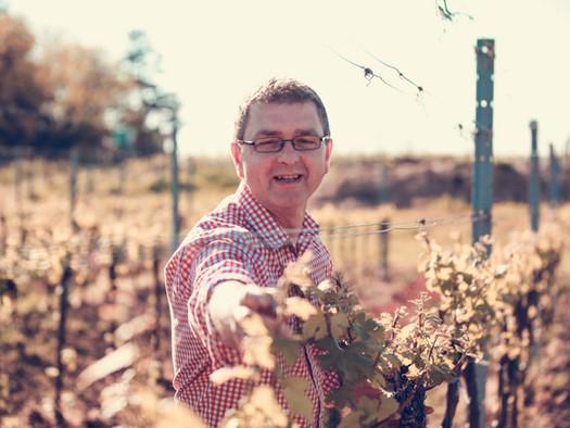 Weingut Traunfellner neu im Ursin Haus
