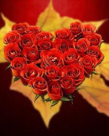 love-1920627_1280.jpg