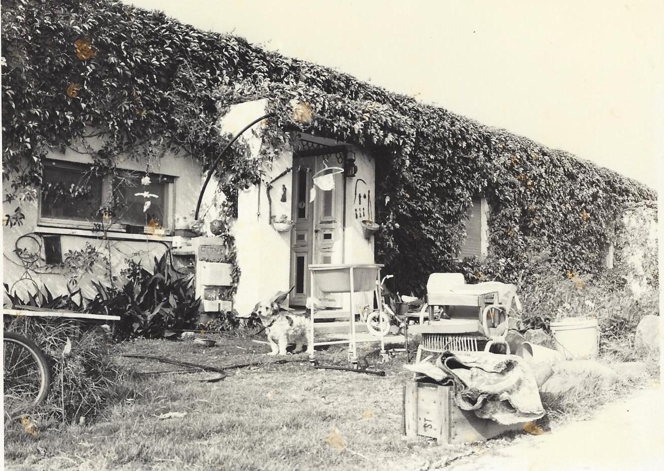 הבית של משפחת שטרום  1981