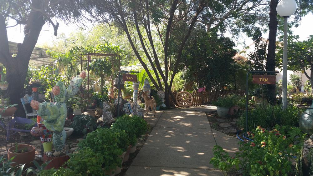 Around the kibbutz