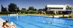 הבריכה