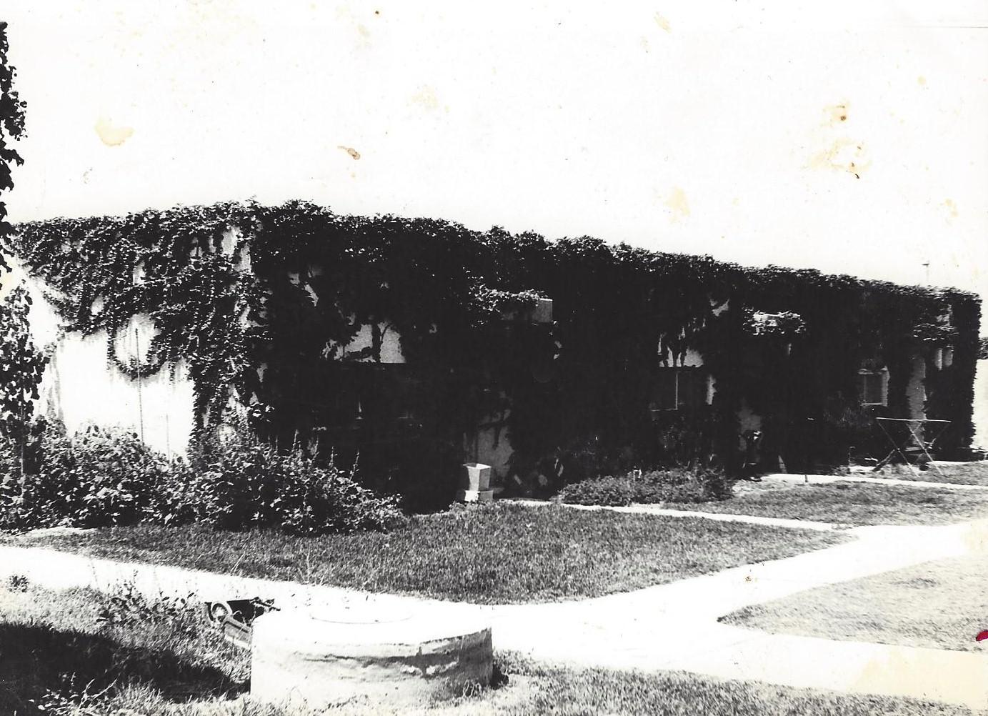 דירת עייזר 1981