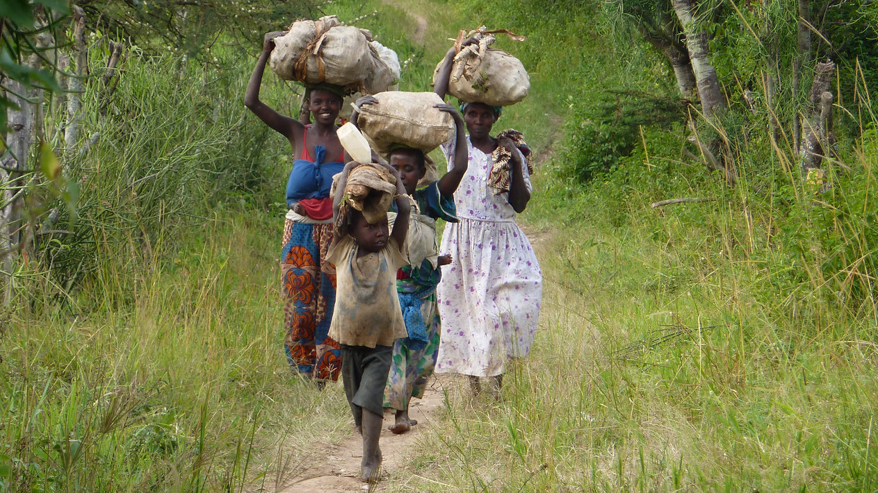 Women and children carrying cassava in Progressive Health Partnership's partner community of Kitura, Uganda