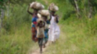 Women and children carrying cassava in Progressive Health Partnership's partner community of Kitura, Uganda