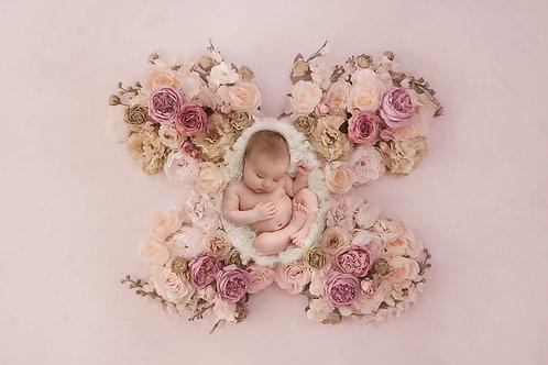 Newborn 1 on 1 for beginners