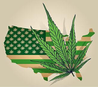 Marijuana United States