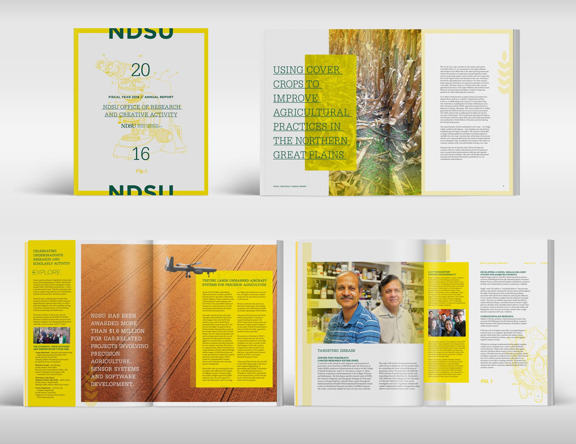 NDSU Research Brochure Design