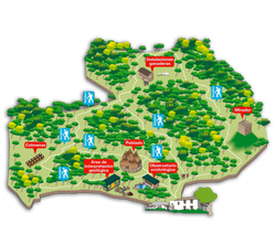 Plano del Poblado Neolítico