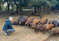 Reunión en la granja